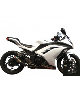 NINJA 300 SLIP ON EXHAUST SYSTEM